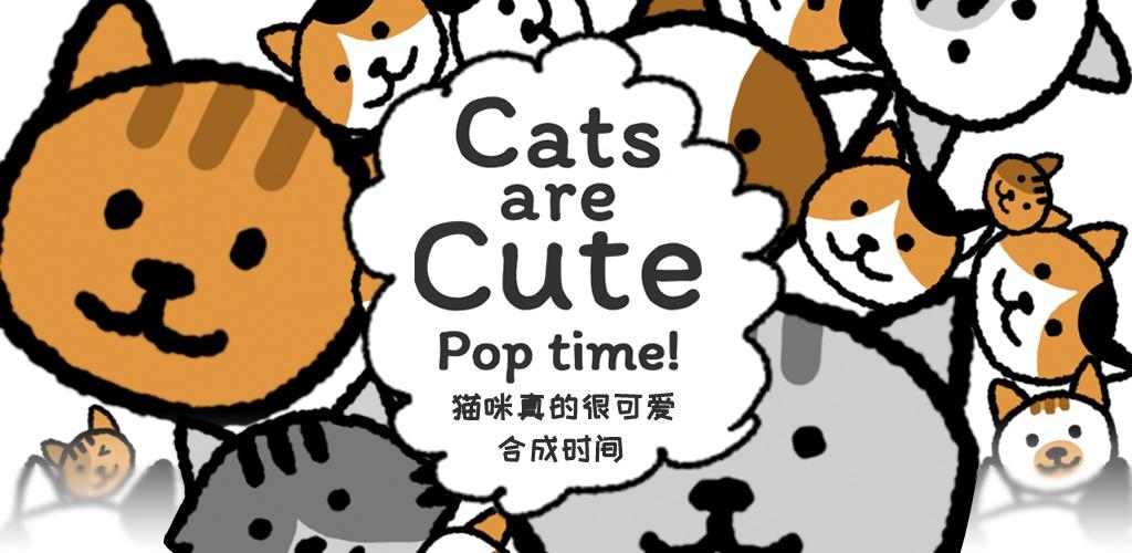 猫咪真的超可爱:合成时间
