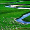 世界最美草原动态壁纸