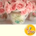 YOO主题-花の物语