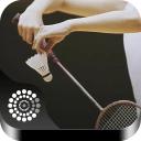 羽毛球—寻找喜欢打羽毛球的朋友!