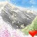 樱花落魔秀桌面主题(壁纸美化软件)