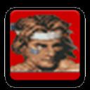 ARCADE模拟器游戏合集