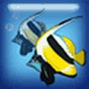 2013钓鱼锦标赛