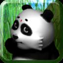 可爱的熊猫宠物