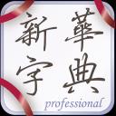新华字典2013