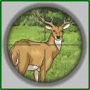四季狩猎3D
