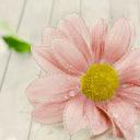 GO主题-花儿朵朵开