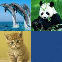 宝宝趣味看图学习与记忆游戏-动物篇