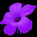 RUI手机主题-紫罗兰