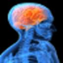 大脑年纪测试