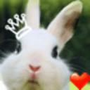 兔宝宝桌面主题-魔秀