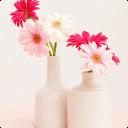 宝软3D主题-粉色小清新