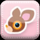 deery小鹿主题壁纸