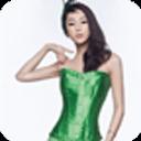 宝软3D主题-绿美人