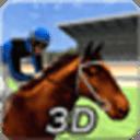 虚拟3D赛马