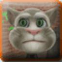 會說話的湯姆貓壁紙相框