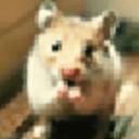 魔幻桌面之可爱动物主题