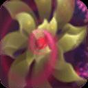 动态3D花朵梦幻壁纸