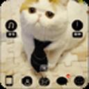 大头猫星人-宝软3D主题