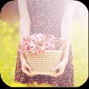恋恋花の物语主题锁屏