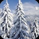 冬日雪景动态壁纸