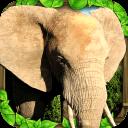 大象模拟器