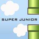飞翔的SJ