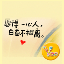 YOO主题-愿得一人心2