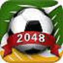2048巴西世界杯版
