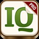国际标准智商测试