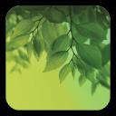 Galaxy S4 绿叶动态壁纸