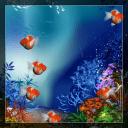 真正的魚動態壁紙免費下載