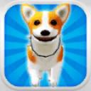 小狗跑:可爱的宠物狗