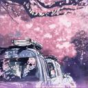 浪漫樱花飘落动态壁纸