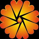 石油宝行情软件安卓版