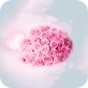 玫瑰花的爱情-宝软3D主题