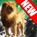 野生狮子攻击3D模拟器2