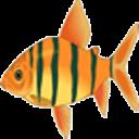 趣味大鱼吃小鱼