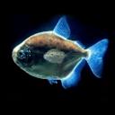 3D水虎鱼动态壁纸