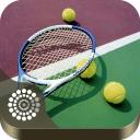 网球—寻找喜欢打网球的朋友!