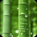 刻在竹子上的约定-宝软3D主题