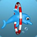 海豚潜水Dolphin
