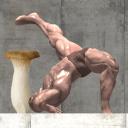非常难!蘑菇与肌