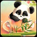 熊猫主题(锁屏桌面壁纸)