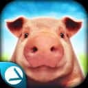 疯猪模拟器