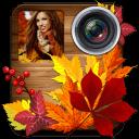 秋天的照片拼贴编辑器