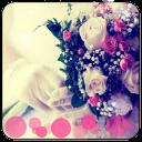 浪漫梦幻婚礼(桌面个性锁屏动态壁纸)
