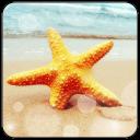海洋之星主題(鎖屏桌面壁紙)