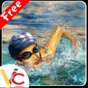 游泳比赛3D