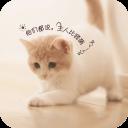 宠物连萌-宝软3D主题